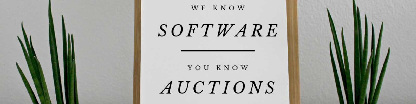 we know software you know auctions