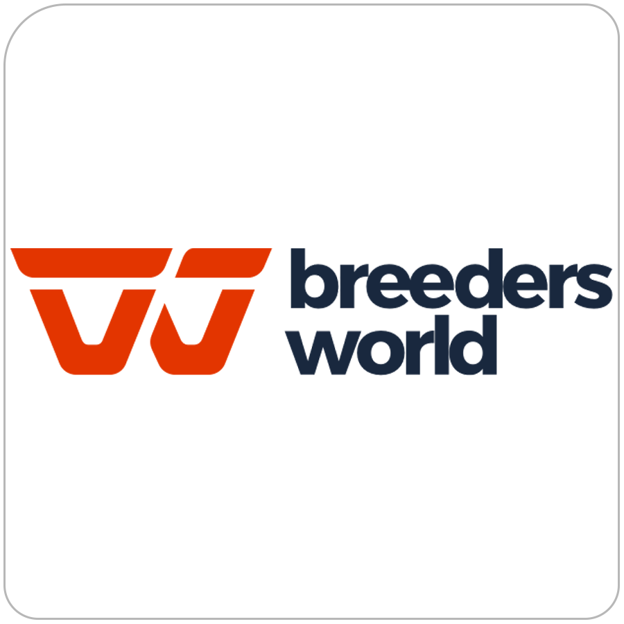 breeders world auctions