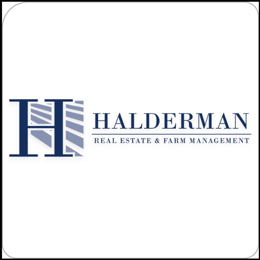 halderman real estate auctions
