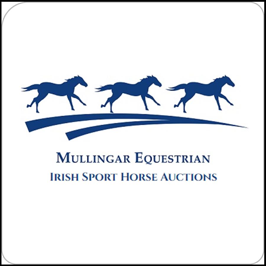 mullingar equestrian auctions