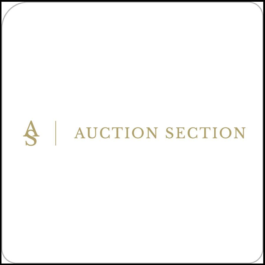 Auction selection auction software